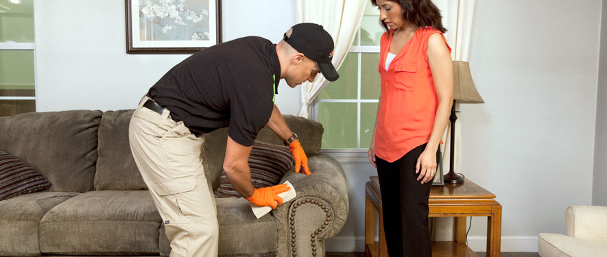 Bartlesville, OK carpet upholstery cleaning