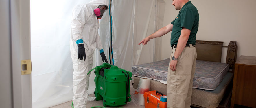 Bartlesville, OK mold removal process